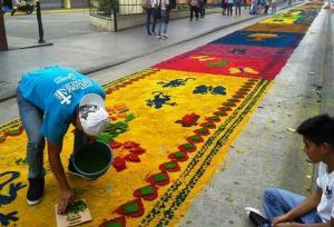 alfombra 1 muni